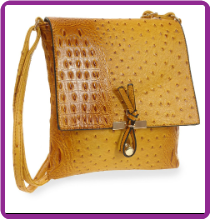 Crossbody Sling Handbag