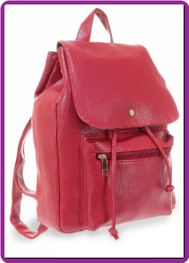Stylish  Fashion Backpack